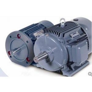 西门子通用高效电机 1LG0系列